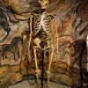 neanderthal_sm1-150x150