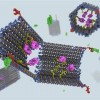 DNA nano-robot